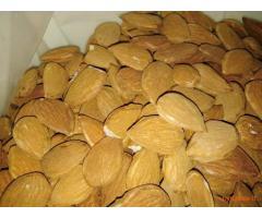 Mandorle siciliane produzione propria